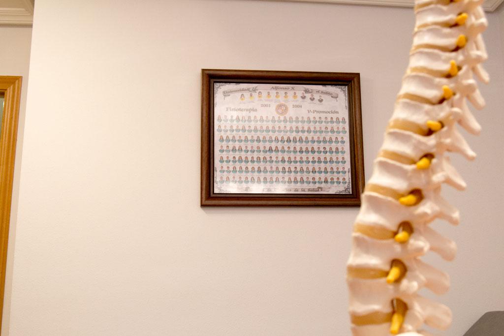 https://clinicamas.es/wp-content/uploads/2016/04/fisioterapeuta-titulado-palencia.jpg